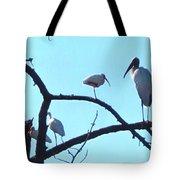 Wood Stork And Ibis Tote Bag
