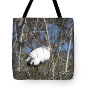 Wood Stork In A Tree Tote Bag