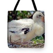 Wood Stork Nestling Tote Bag