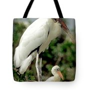 Wood Stork With Nestling Tote Bag