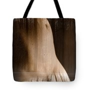 Wooded Belly Tote Bag