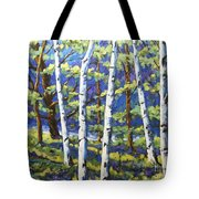 Woodland Birches Tote Bag