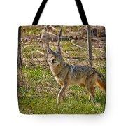 Woodland Coyote Tote Bag