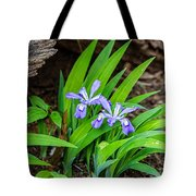 Woodland Dwarf Iris Wildflowers Tote Bag
