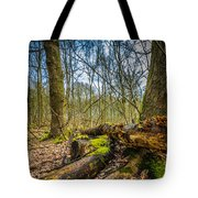 Woodland Fungi Tote Bag