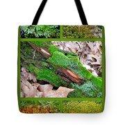 Woodland Mosses Tote Bag