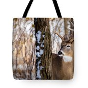 Woodland Outlaw Tote Bag by Steven Santamour
