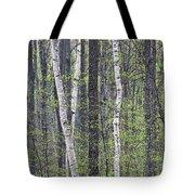 Woodland Spring Tote Bag