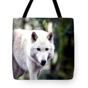 Woodland White Wolf 2 Tote Bag