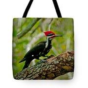 Woodpecker On A Limb Tote Bag