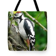 Woodpecker Swallowing A Cherry  Tote Bag