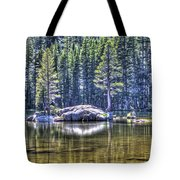 Woods Lake 1 Tote Bag
