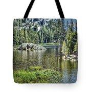 Woods Lake 2 Tote Bag