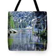 Woods Lake Tote Bag