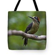 Woody Woodpecker.. Tote Bag