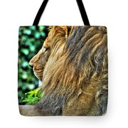 Woolly Mane Of The King   Tote Bag