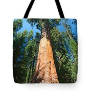 World Famous General Sherman Sequoia Tree In Sequoia National Park. Tote Bag