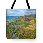 Worlds End State Park Lookout Tote Bag