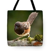 Worm Watch Tote Bag