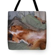 Worn Out Tote Bag