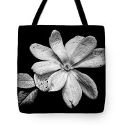 Wounded White Magnolia Wide Version Black And White Tote Bag