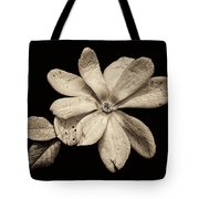 Wounded White Magnolia Wide Version Sepia Tote Bag