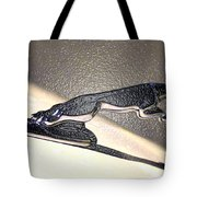 Wrap It Up I Will Take It Tote Bag