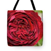 Wrapped Red Tote Bag