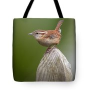 Wren Chirping Tote Bag