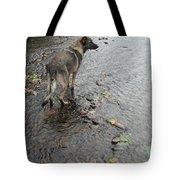 Wrigley Tote Bag