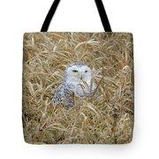 Wv Snowy Tote Bag