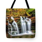Wyandot Falls Ricketts Glen Tote Bag