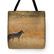Wylie Coyote Tote Bag