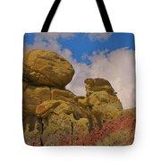 Wyoming Badlands Rock Detail Two Tote Bag