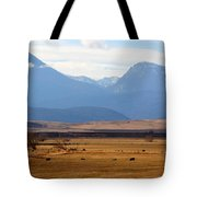 Wyoming Beauty Two Tote Bag