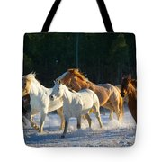 Wyoming Horses Tote Bag