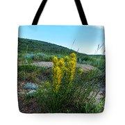 Wyoming Wildflowers Indian Paintflowers Tote Bag
