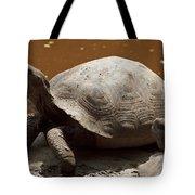 yawning juvenile Galapagos Giant Tortoise Tote Bag