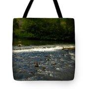 Ye Olde River Wye Tote Bag