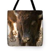 Waco Texas Buffalo Nose Drip Tote Bag