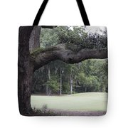Years Of Living Tote Bag