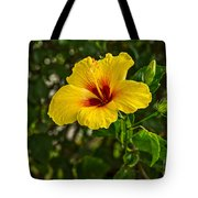 Yellow - Beautiful Hibiscus Flowers In Bloom On The Island Of Maui. Tote Bag