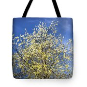 Yellow And Blue - Blooming Tree In Spring Tote Bag