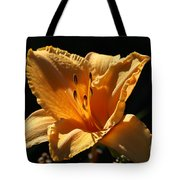 Yellow And Cream Day Lily Tote Bag