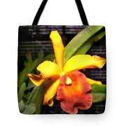 Yellow And Orange Cattleya In The Hothouse Tote Bag