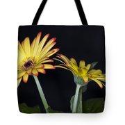 Yellow And Orange Gerbera 2 Tote Bag