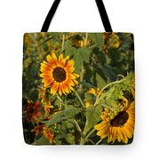 Yellow And Orange Sunflowers Tote Bag