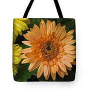 Yellow And Peach Daisy Tote Bag