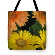 Yellow And Peach Tote Bag