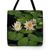 Yellow  And Pink Lily  Tote Bag